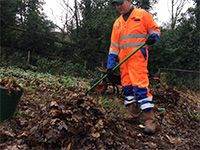 LEAF CLEAN-UPS AND GARDEN WASTE CLEARANCE AND REMOVAL
